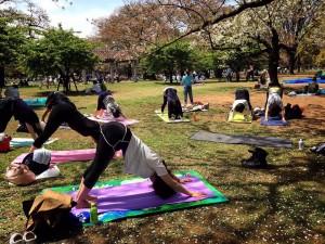 瞑想を深めるヒーリングヨガWS@代々木公園 @ 代々木公園