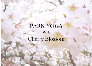 Park Yoga with Cherry Blossom*春のパークヨガ開催at保土ヶ谷公園 @ 県立保土ヶ谷公園 | 横浜市 | 神奈川県 | 日本